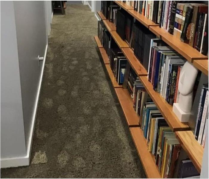 Footprints on wet carpet and a full bookshelf